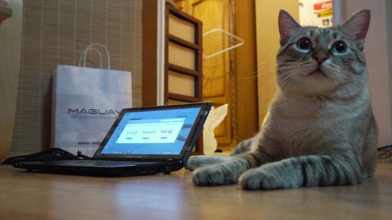Ce laptop să cumpăr la 2000 de lei