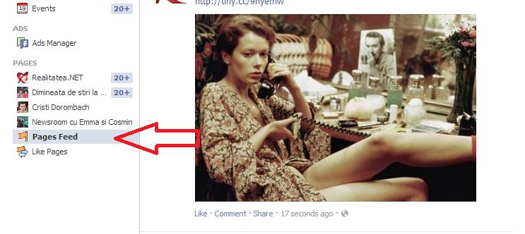 Feeduri de la pagini, separat  pe Facebook