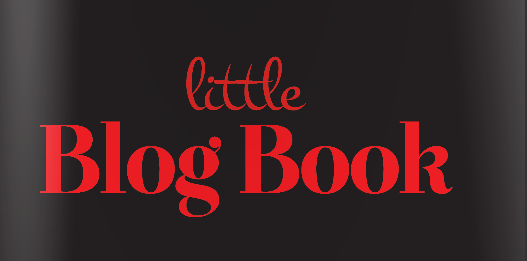 Little blog book
