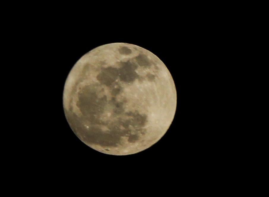 Luna de Valentine's Day