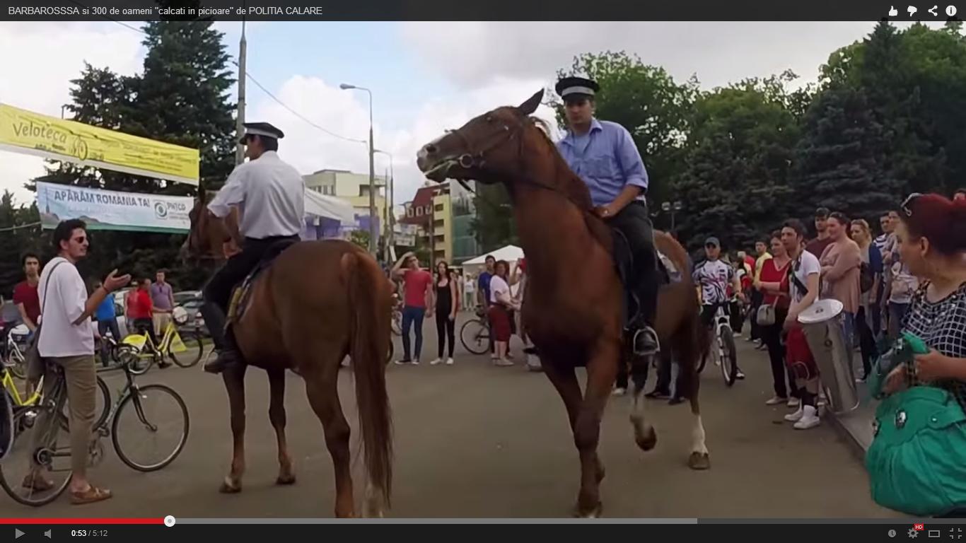 Politia locala din Bucuresti si cum inteleg ei ce este un parc