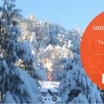 Tabăra online de iarnă, Biz SMS Camp